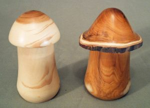 Yew toadstool boxes