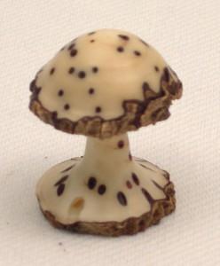 Thika pod mushroom