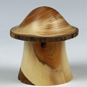 Yew toadstool box turned by Paul Hannaby creative woodturning
